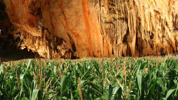The Future of Corn Production May Be Underground