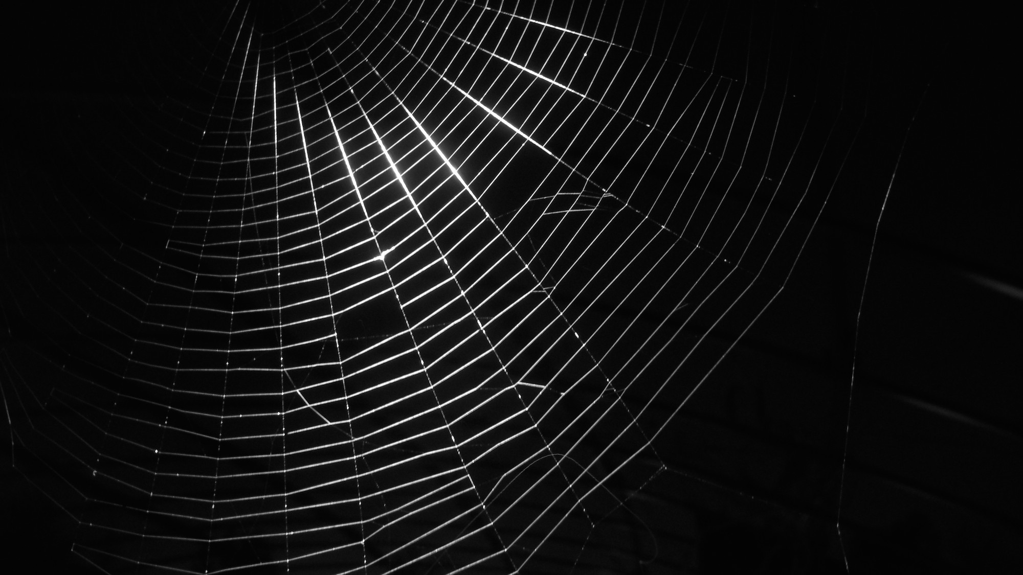 Arrests, Attacks, and Increasing Recognition: 2015 on the Dark Web