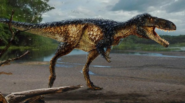 Tyrannosaurs Got Smart Before They Got Big, Paleontologists Say