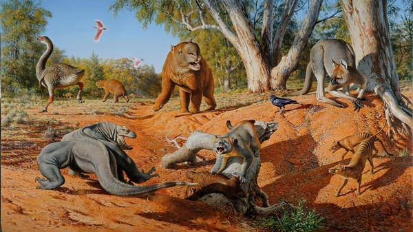 Ancient Humans to Blame for Killing Australia's 1,000-Pound Kangaroos