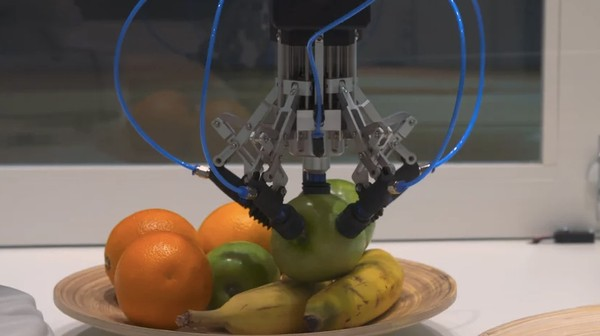 Here Come the Fruit-Sorting Robots