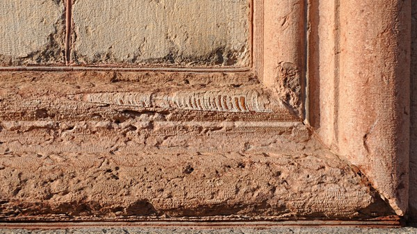 The Coolest Urban Fossils That Are Right Beneath Your Feet