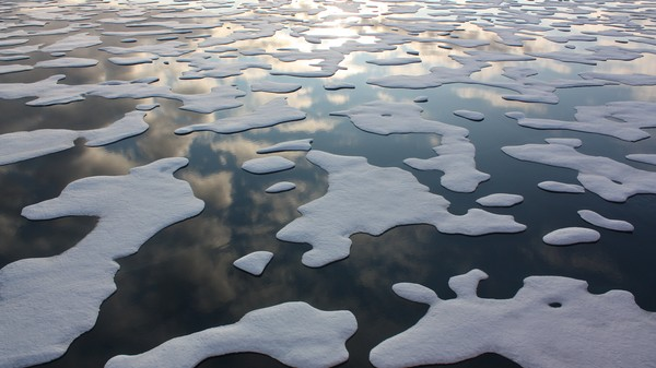 Arctic Sea Ice Is Struggling to Reform in Record-Hot Temperatures
