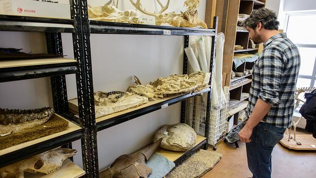 A Day in the Life of a First Year Paleontology PhD Student