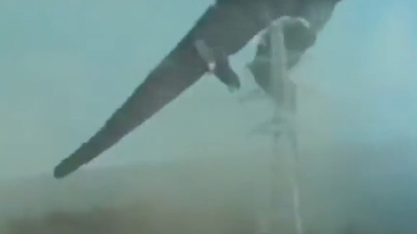 Godzilla Getting 'the Dick Drop' Is the Best YouTube Video
