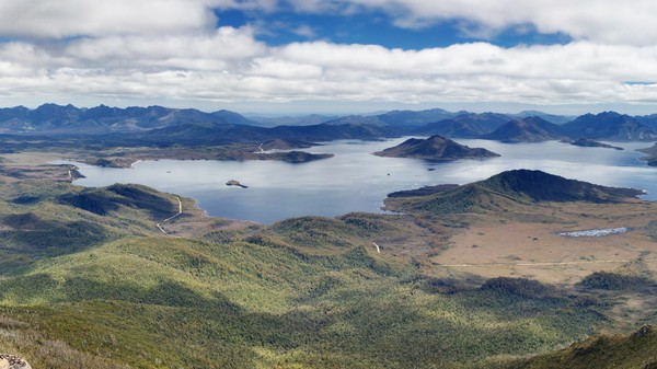 Australia Wants to Log in a World Heritage Rainforest