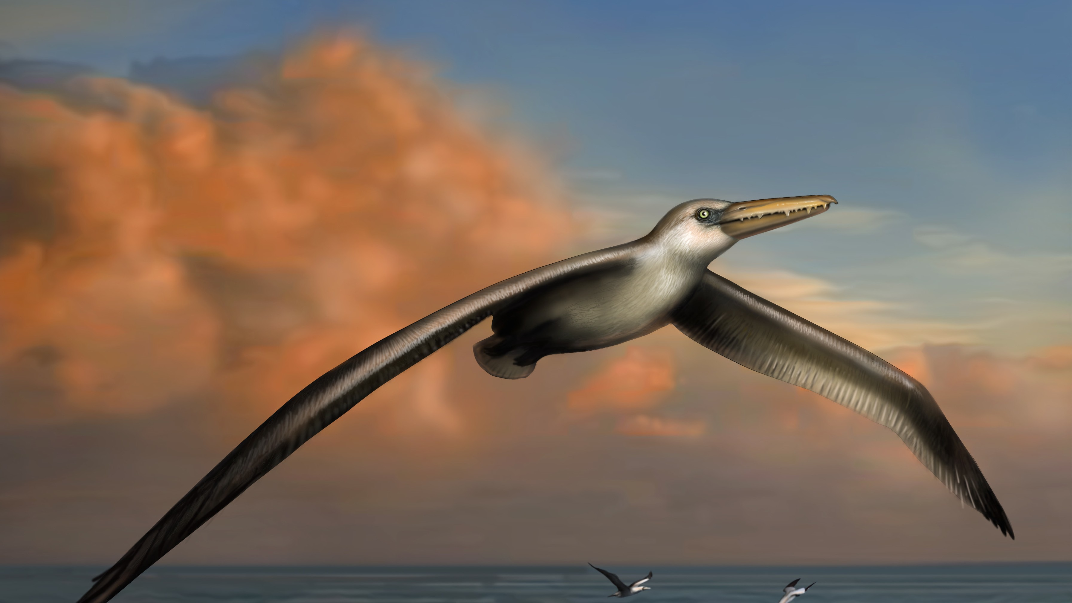 The Biggest Bird That Ever Flew