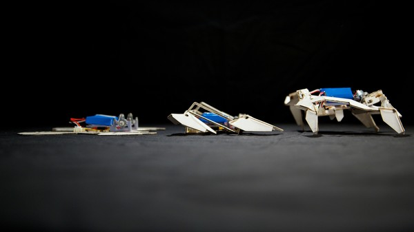 Self-Assembling Transformer Robots Will Soon Inhabit Your Nightmares
