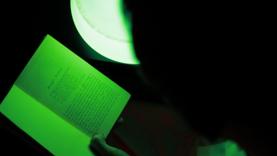 ​A Bioengineered Glow-in-the-Dark Plant Is Your Next Night Light