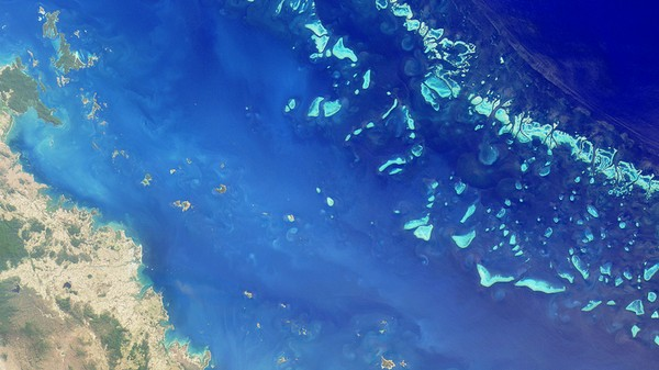 Australia Decided Dumping Tons of Mud on the Great Barrier Reef Is a Bad Idea