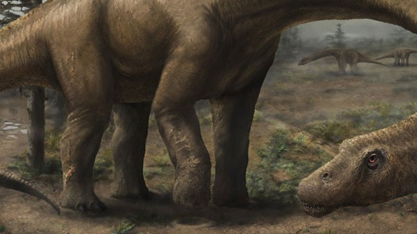 Dreadnoughtus Was Probably Not the Biggest Dinosaur Ever