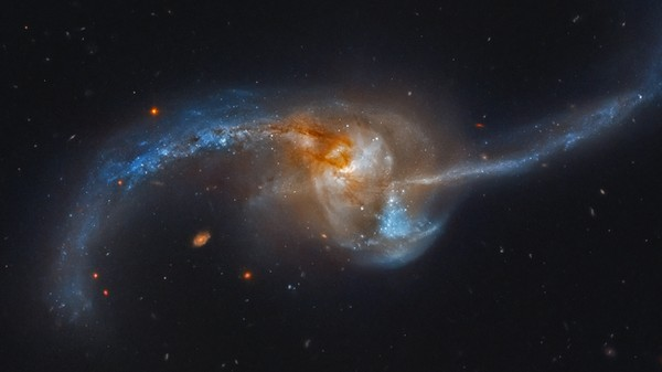The Universe's Biggest Galaxies Are Cannibals