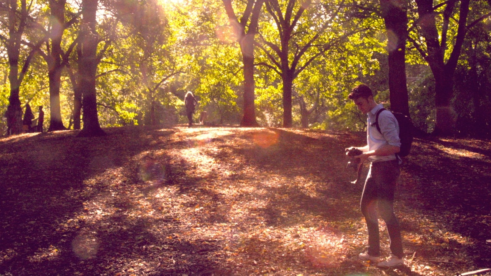 Central Park's Soil Is Home to Microbes Found All Over the World