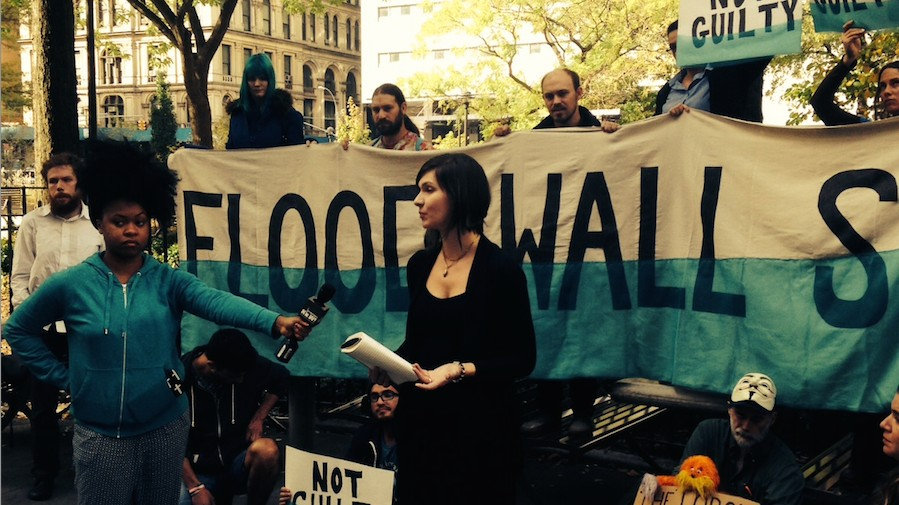 Out of 'Necessity,' a Dozen Will Face Jail Over Wall St. Climate Protest