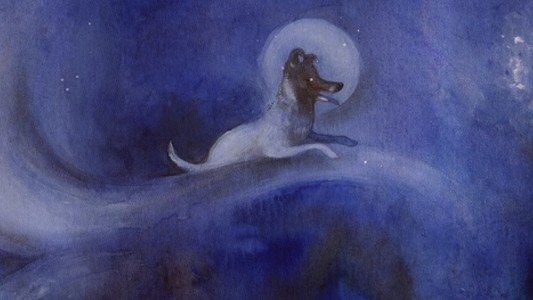 ​Why We Still Want Laika the Space Dog to Come Home