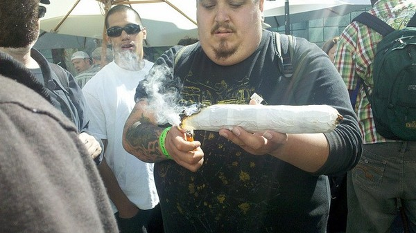 Does Smoking Pot Make You Dumb? Stoners Respond to Latest Research
