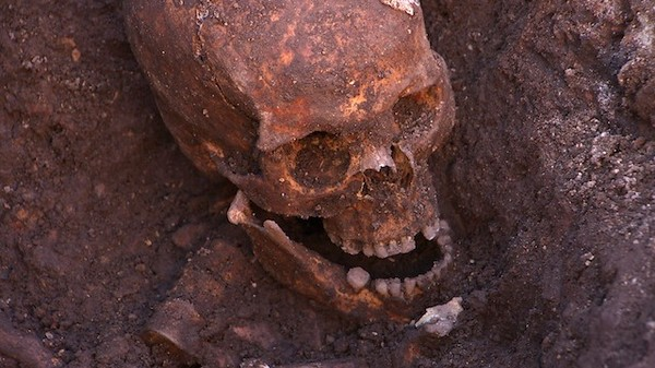 It's Him: Richard III Is the Oldest Successful DNA Identification Case