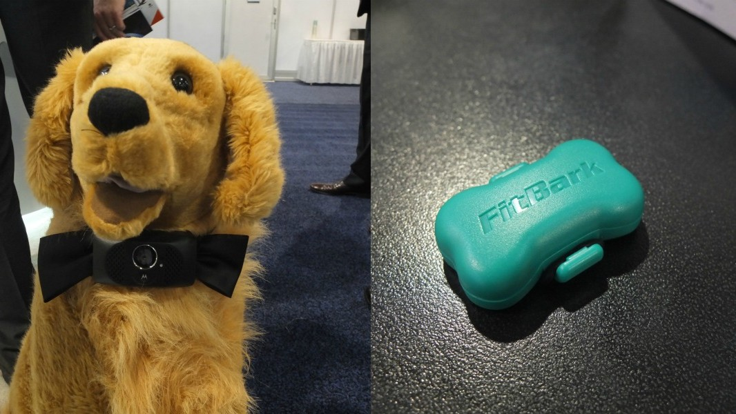 There Are a Crapload of Dog Wearables at CES This Year