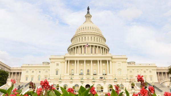 CISPA's Successor Is Being Fast-tracked Through the Senate