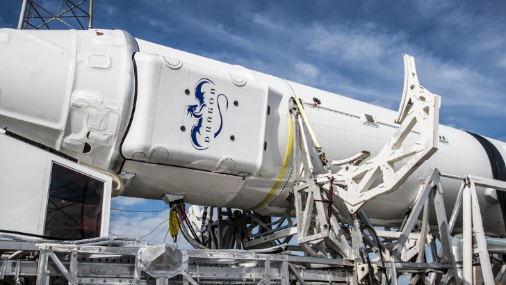 Designing Rockets Might Be Easier Than Parsing the SpaceX Copyright Situation