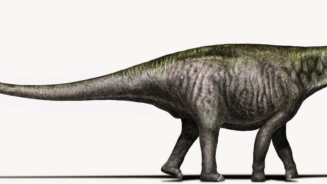 Inner Children Rejoice: There Is Probably a Brontosaurus After All!