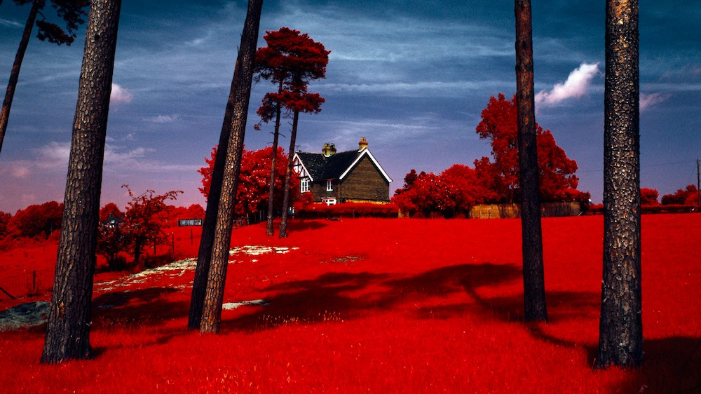 This Photographer Captures the World in Infrared