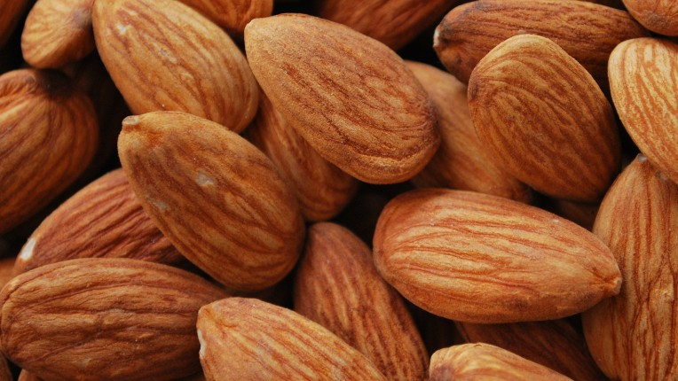 Is Boycotting Almonds to Save Water GOOD or BAD?