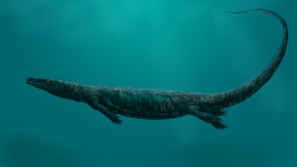 How the 60-Foot-Long 'Sea Rex' Gave Birth