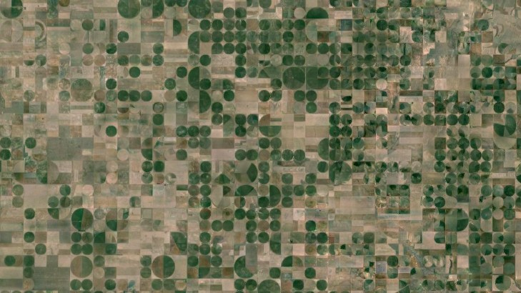 What the World's Crop Patchwork Looks Like from Space