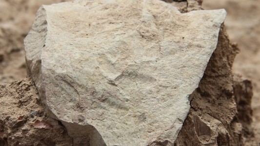 The Oldest Stone Tools Predate Homo Sapiens by Millions of Years