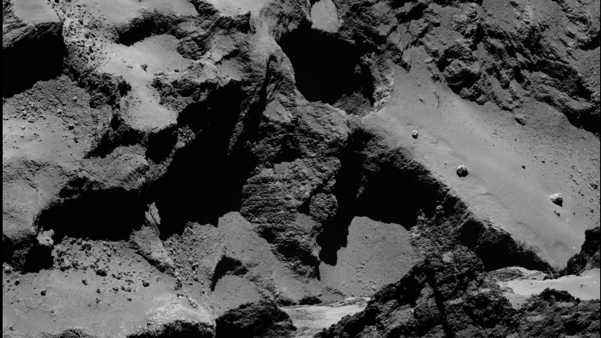 These Scientists Say There Could Be Life on Rosetta's Comet