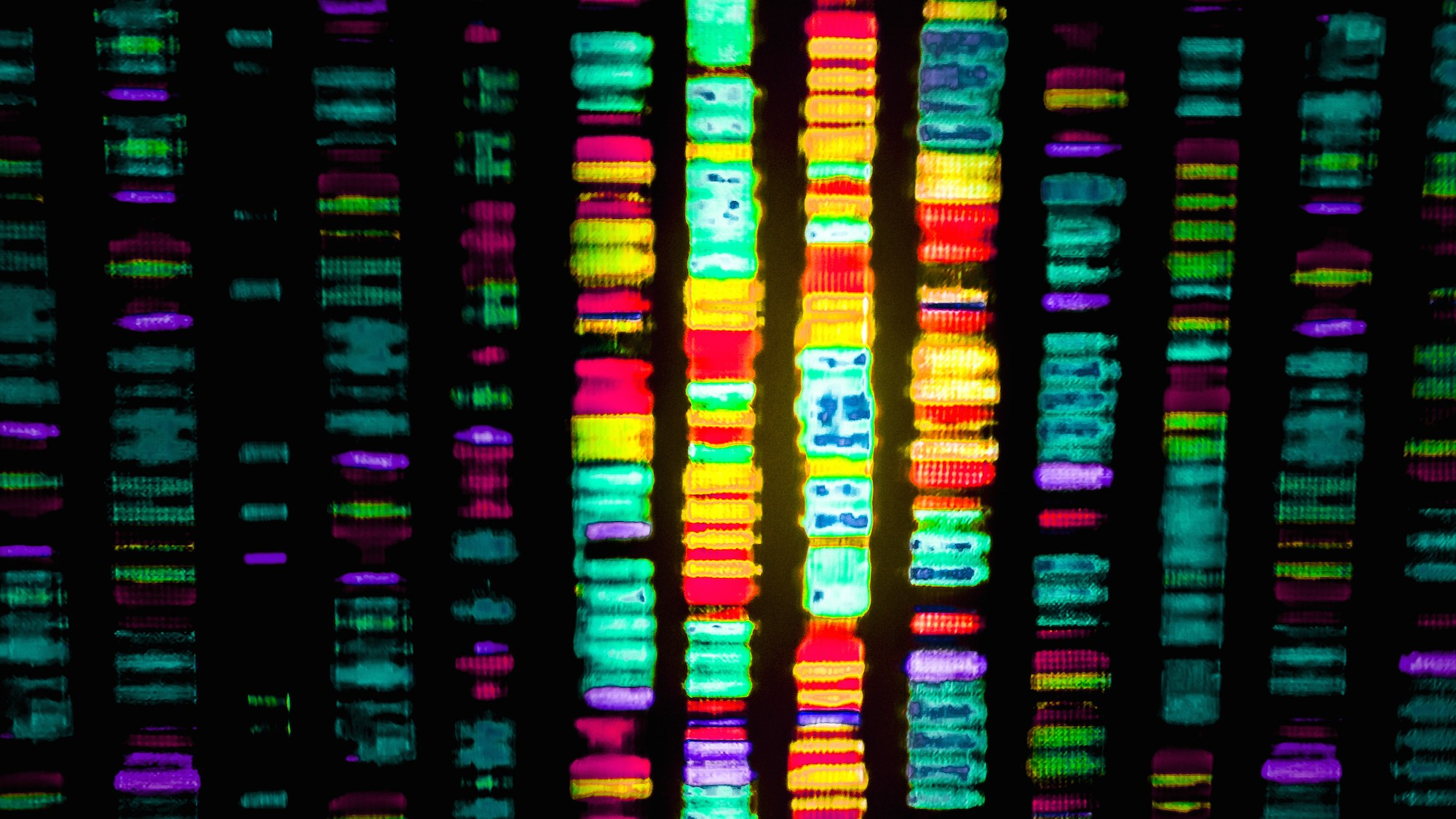 The UK's Plan to Sequence 100,000 Human Genomes