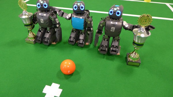 Researchers Want Robots to Play in the World Cup by 2050