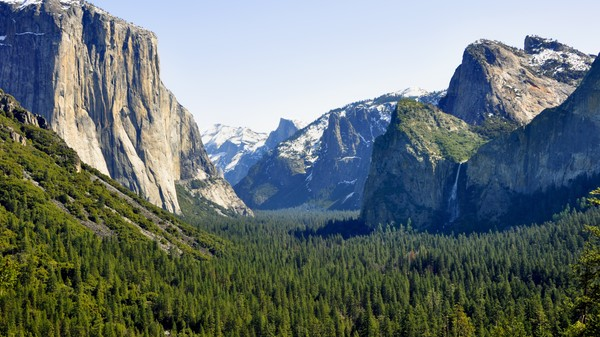 How Did Two Yosemite Park Campers Catch the Plague?