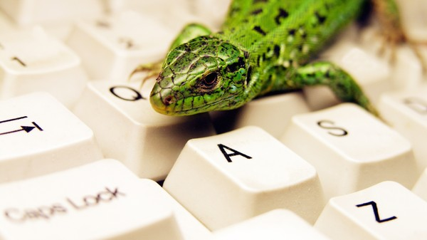 Hackers 'Lizard Squad' Just DDoSed the UK's National Crime Agency