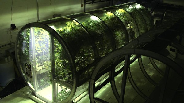 Scientists Have Already Built a Prototype Greenhouse for Mars