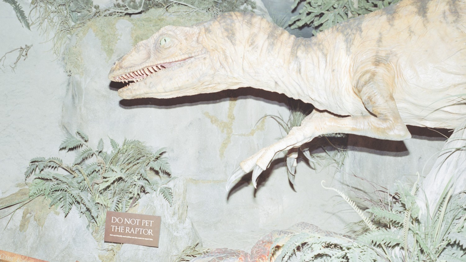 Photo Essay: Kentucky's Creation Museum