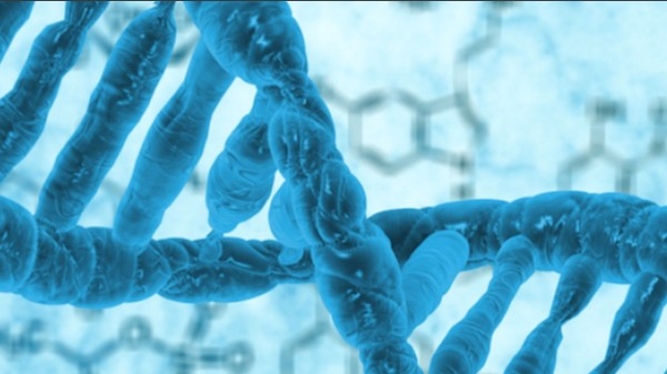 The Simplest Living Organism Ever Has 437 Genes and Was Made in a Laboratory