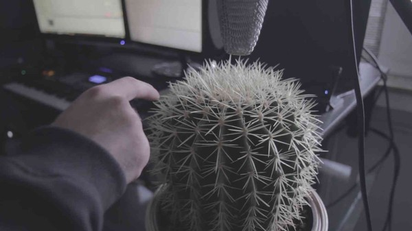 Watch This DJ Make Trap Music Using a Cactus