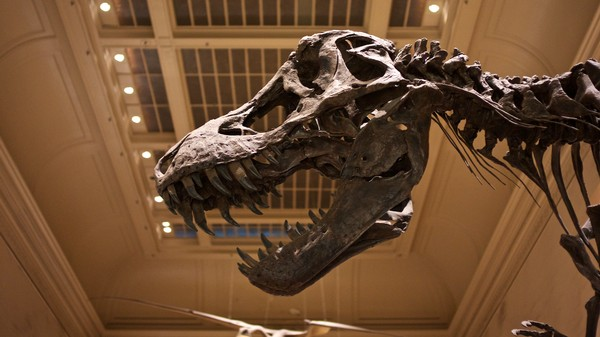 Kiss Me Deadly: Did T-Rex Have Lips All Along?