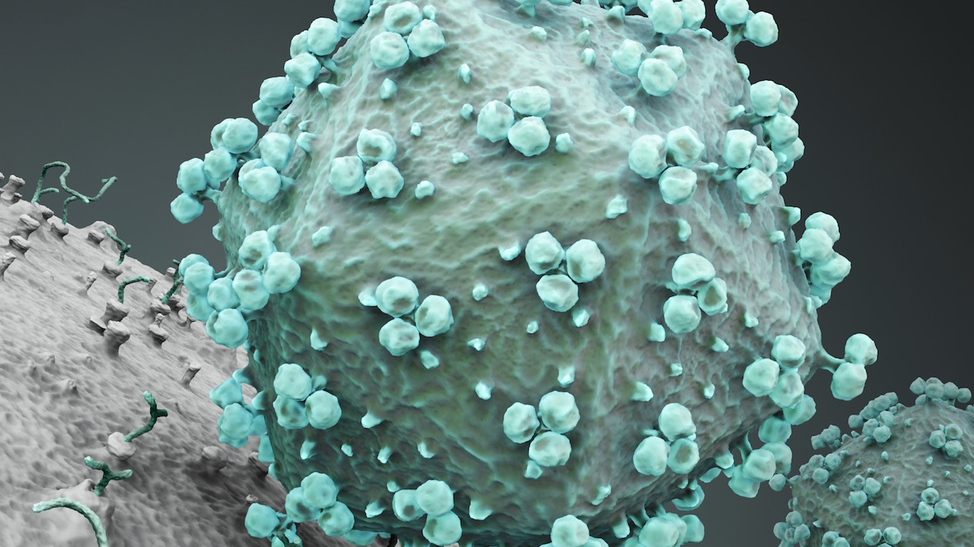 Promising Antibody Therapy Wakes Up HIV Just To Kill It