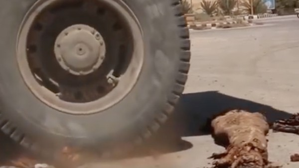 ISIS Has Been Running Over Syrian Mummies with Bulldozers