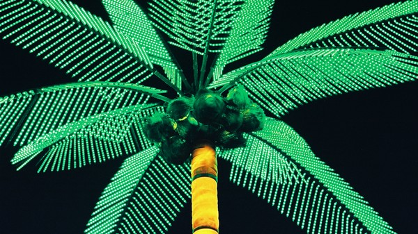 What Synthetic Biology Is Doing to Our Houseplants