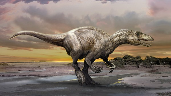 Paleontologists Have Found New 'Megaraptor' Dinosaur