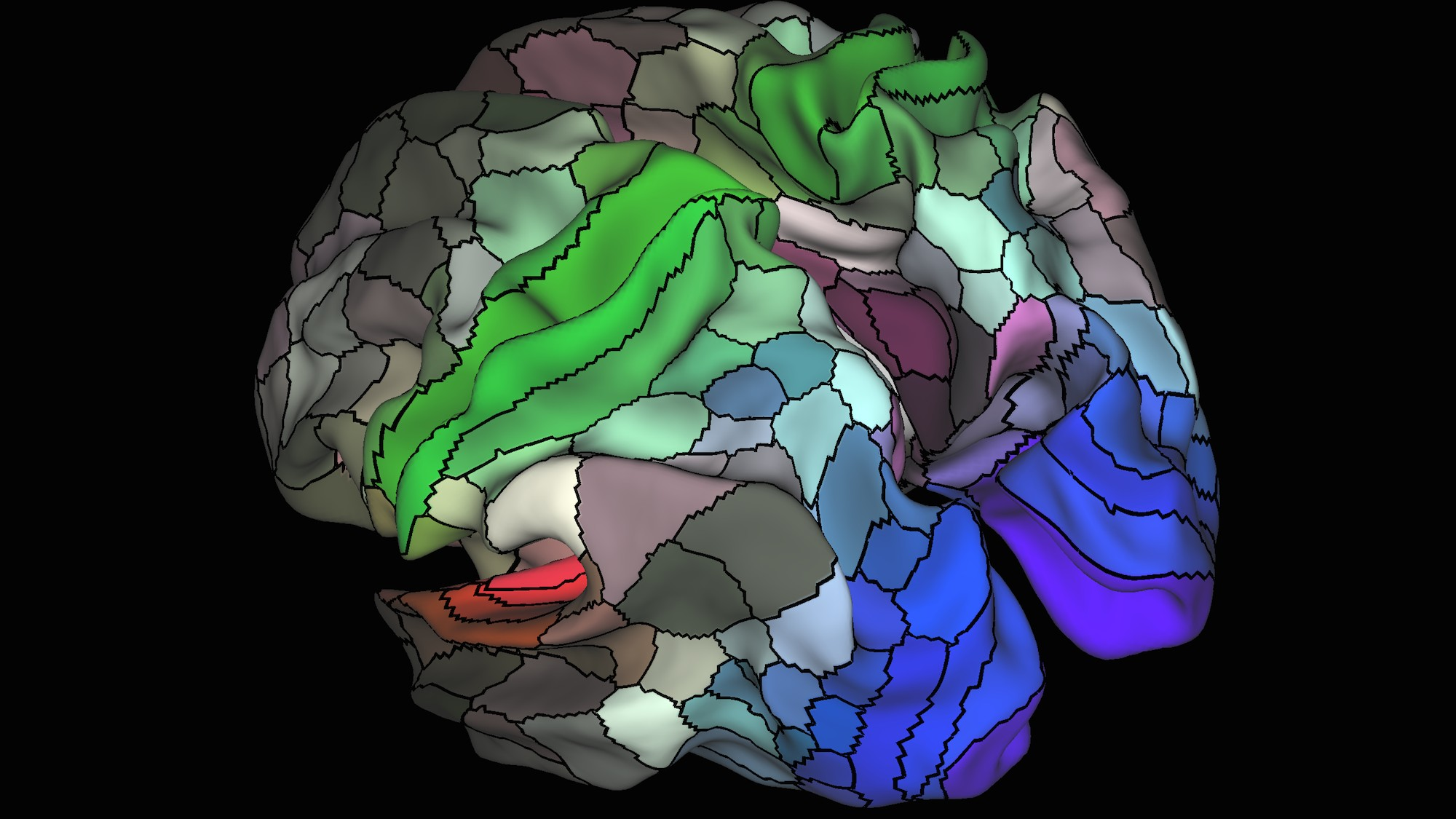 Scientists Made a New Map of the Human Brain