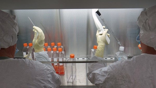 Why a Zika Vaccine Will Come Much Faster Than the Ebola Vaccine Did