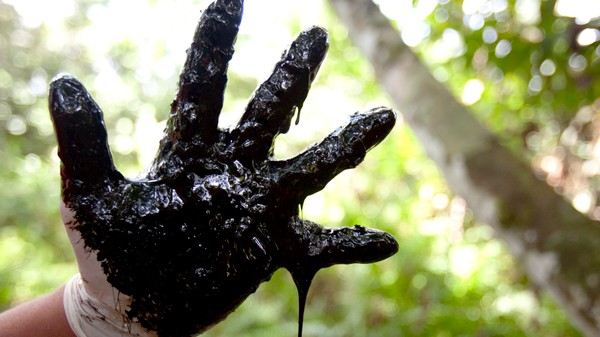 Chevron Wins, But Ecuador's Amazon Remains an Unmitigated Environmental Disaster