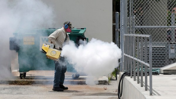 Miami Isn't Waiting on Congress Funds to Fight Zika