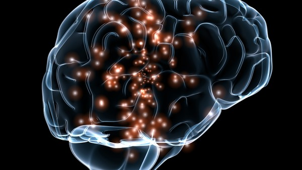 Drugs Designed to Aid Alzheimer's Patients Could Enhance Healthy Brains