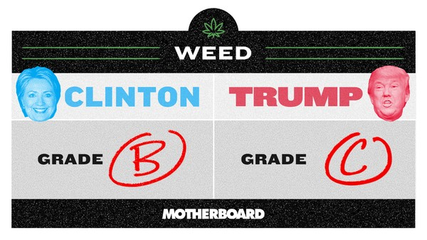 Trump vs. Clinton: Who's Better on Weed?